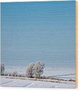 Snow Covered Landscape Wood Print