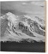 snow covered landscape of anvers island mountain range and neumayer channel Antarctica Wood Print