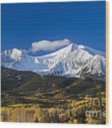 Snow Covered Mount Sopris With Golden Aspen Trees Wood Print
