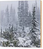 Snow Covered Mountain Ash Wood Print