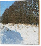 Snow Covered Riverbed Wood Print