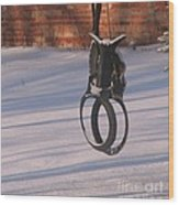 Snow Covered Rocking Horse Swing Wood Print