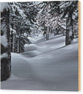Snow Covered Trail Wood Print