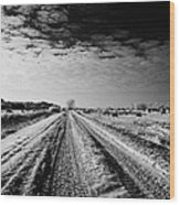 snow covered untreated rural small road in Forget Saskatchewan Canada Wood Print