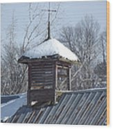 Snow Cupola Wood Print