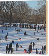 Snow Day - Fun Day At The Park Wood Print