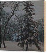 Snow Day Hued Wood Print