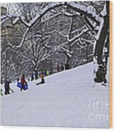 Snow Day In The Park Wood Print