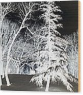 Snow Day Inverted Wood Print