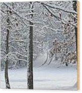 Snow Day Iv Wood Print