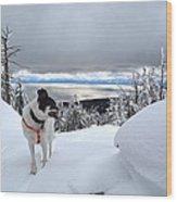 Snow Dog Wood Print