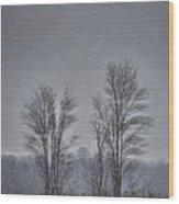 Snow Falling On Bare Trees Wood Print