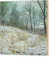 Snow Fence Beach Dune Wood Print