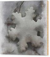 Snow Flake 01 Photo Art Wood Print