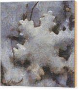 Snow Flake Enjoy The Beauty Photo Art Wood Print