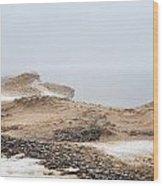 Snow Fog At Whitefish Point Wood Print