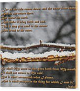 Snow From Heaven Wood Print