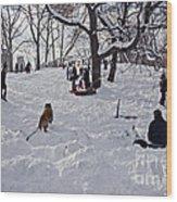 Snow Fun Wood Print