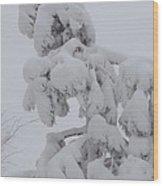 Snow Goon Wood Print