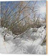 Snow Grass Wood Print