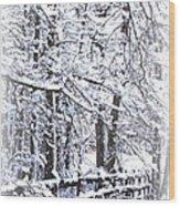 Snow-img-2174-merry Christmas Wood Print