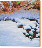 Snow In Color Wood Print