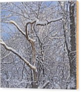 Snow In Connecticut Wood Print