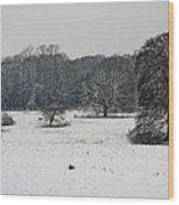 Snow In Lincolnshire Wood Print