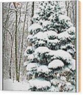 Snow In Ohio Wood Print