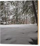 Snow In Shade  Wood Print