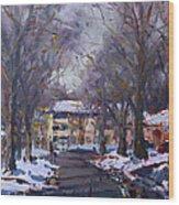 Snow In Silverado Dr Wood Print