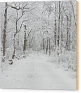 Snow In The Park Wood Print
