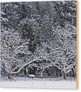 Snow In The Valley Wood Print