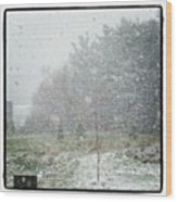 #snow  It Is April 4th. This Is The Wood Print