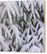 Snow Laden Branches Wood Print