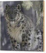 Snow Leopard 1 Wood Print