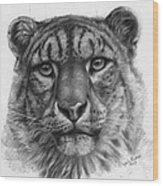 Snow Leopard - Panthera Uncia Portrait Wood Print