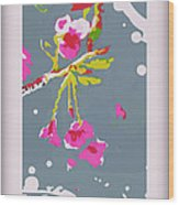 Snow On Cherry Blossom Wood Print by Wendy Wiese