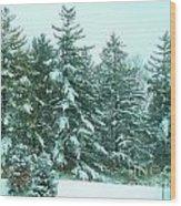 Snow On The Evergreens Wood Print