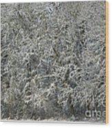 Snow On Trees Wood Print