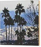 Snow Or Sun Shadows Wood Print