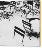 Snow Picnic Wood Print by Diana Angstadt