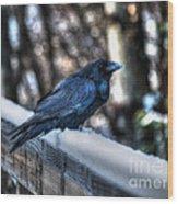 Snow Raven Wood Print by Skye Ryan-Evans