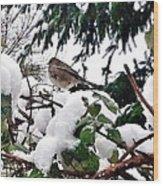 Snow Scene Of Little Bird Perched Wood Print