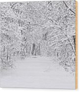 Snow Scene Tree Branches Wood Print