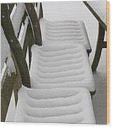 Snow Seat Wood Print