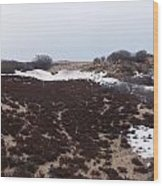 Snow Spotted Dunes Wood Print