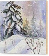 Snow Spruce I Wood Print