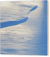 Snow Sunlight And Shadows Wood Print