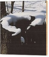 Snow Topping Log Wood Print